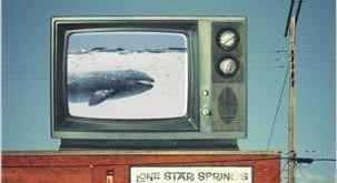 Les baleines se baignent nues